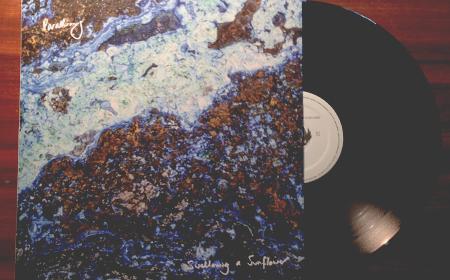 parading_vinyl